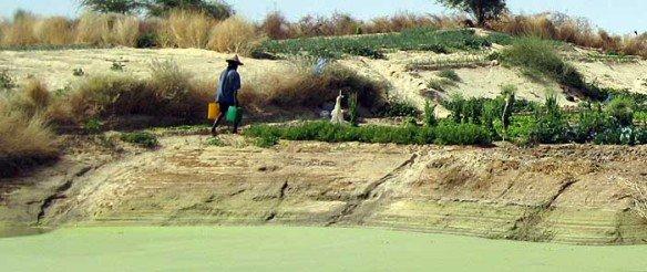AbdesSalaam-Attar-Timbuktu-acqua