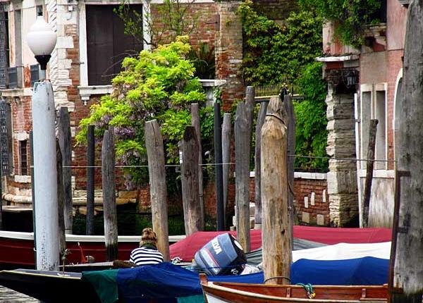 Venezia Giardini Segreti 1