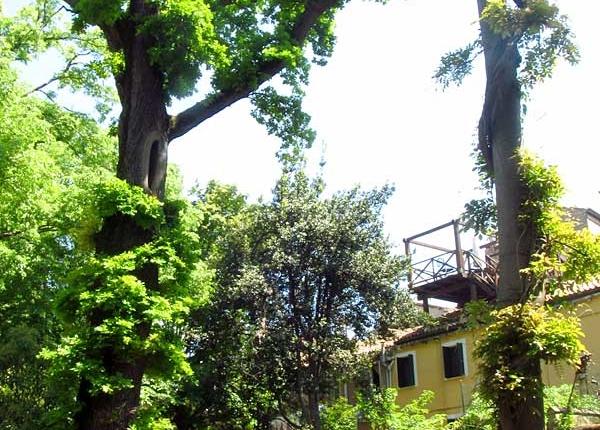 Venezia Giardini Segreti 18