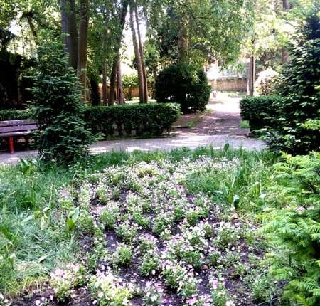 Venezia Giardini Segreti 28