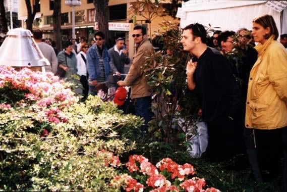 ceccarini fiori psd 1