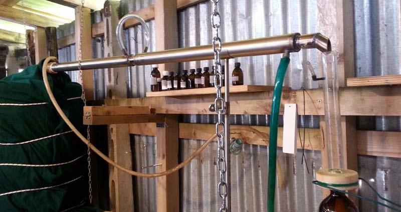 distillatore 1 800x423 - Distillazione della canapa indiana -