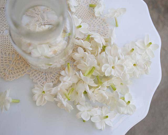 petali-bianchi