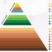 piramide olfattiva 632x400