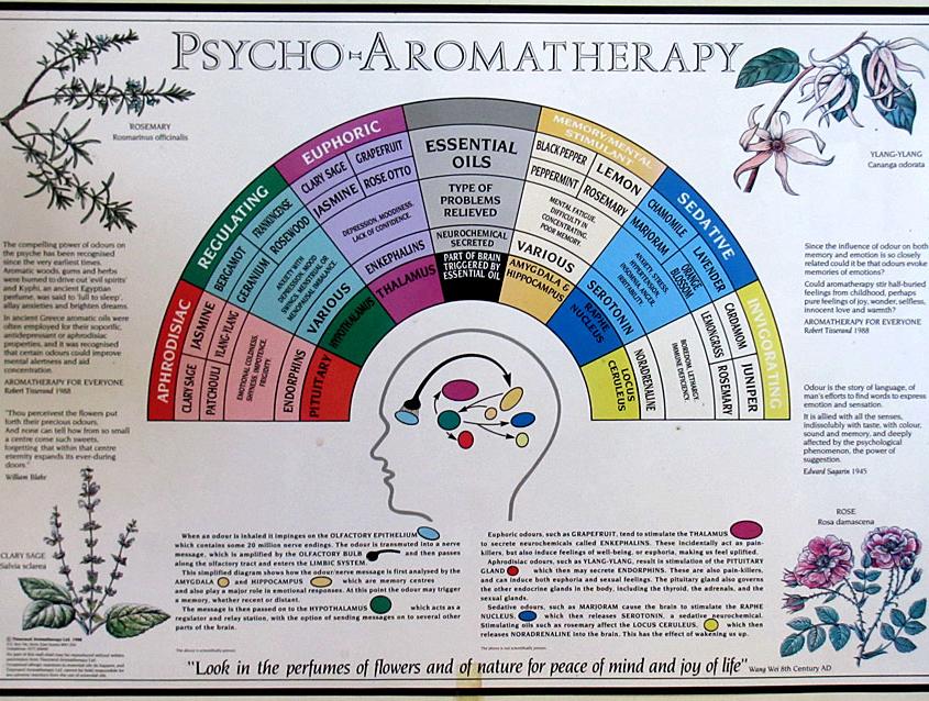 psico-aromaterapia-poster